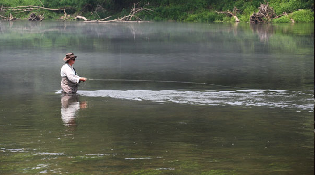 Upper cumberland watershed watch delivering science to for Cumberland river fishing